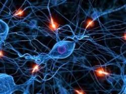 effects of hallucinogenic drugs